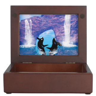Awesome orca memory box