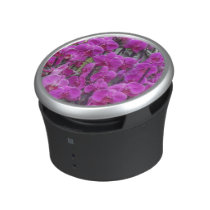 awesome orchids pink speaker