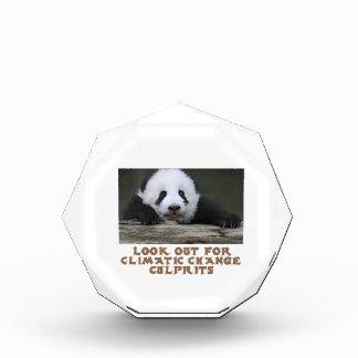 awesome Panda bear designs Awards