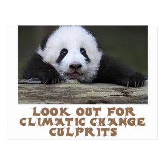 awesome Panda bear designs Postcard