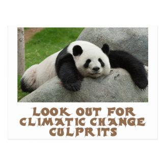 awesome Panda designs Postcard