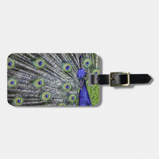 Awesome Peacock Travel Bag Tags
