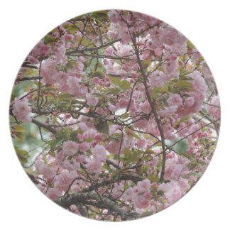Awesome Pink Flower Blossome Photograph Plate