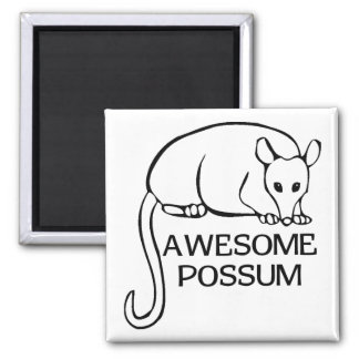 Awesome Possum 2 Inch Square Magnet