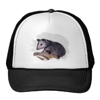 Awesome Possum Opossum Hats