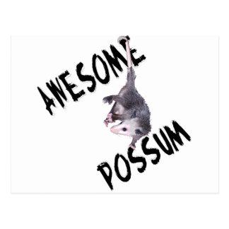 Awesome Possum Opossum Postcard