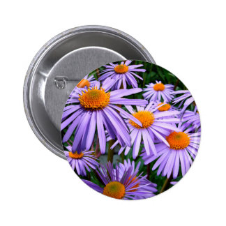 Awesome Purple Gold Asters Floral Design Pins