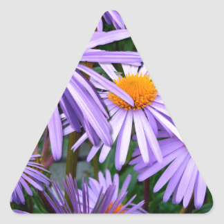 Awesome Purple Gold Asters Floral Design Triangle Sticker