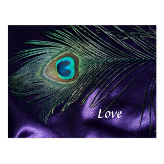 Awesome Purple Peacock Feather Postcard