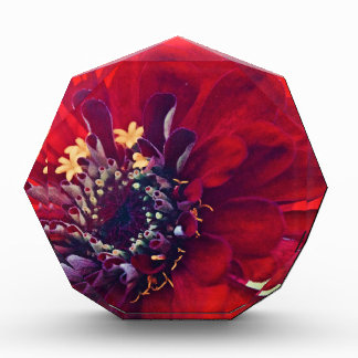 Awesome Red Flower Acrylic Award