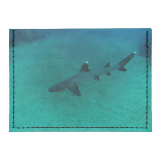 Awesome Shark in the Deep Tyvek® Card Case Wallet