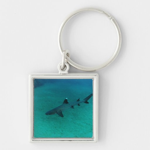 Awesome Shark in the Deep Keychains