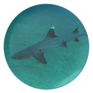 Awesome Shark in the Deep Party Plates