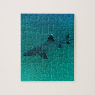 Awesome Shark in the Deep Puzzles