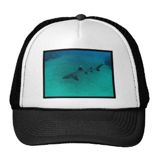 Awesome Shark in the Deep Trucker Hat