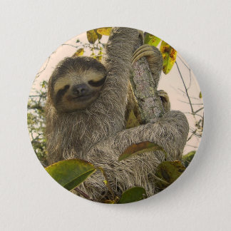 Awesome Sloth Button