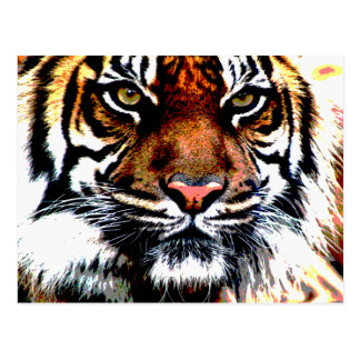 Awesome Tiger Face Postcard