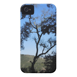 Awesome Trees on York Mountain Road, Templeton iPhone 4 Cover