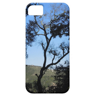Awesome Trees on York Mountain Road, Templeton iPhone SE/5/5s Case
