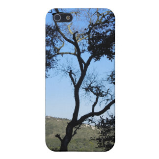 Awesome Trees on York Mountain Road, Templeton iPhone SE/5/5s Cover