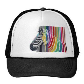 awesome trendy colourful vibrant stripes zebra hat