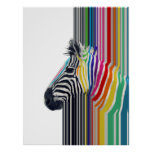awesome trendy colourful vibrant stripes zebra poster