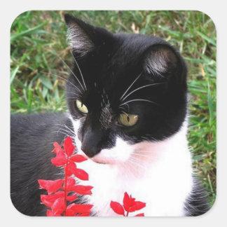 Awesome Tuxedo Cat in Garden Square Sticker