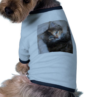 Awesome two faced cat pet t shirt