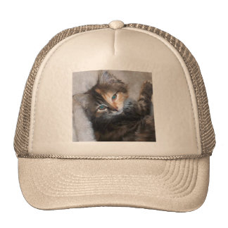 Awesome two faced cat trucker hat