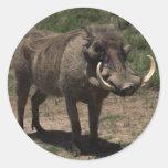 Awesome Warthog Round Sticker