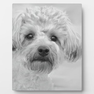 Awesome  Yorkie Poo in Sepia Tones Plaque