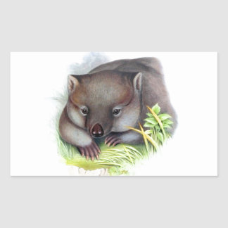 Awesomely cute Australian animal wombat vintage Rectangle Sticker