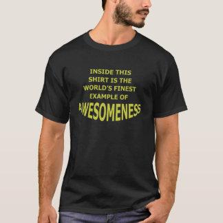 Awesomeness Shirts