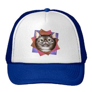 Awestruck Kitty Hat