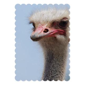 Awkward Ostrich 5x7 Paper Invitation Card