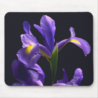 Awsome, purple Iris Mouse Pad
