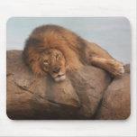 Awwsome Lion Mouse Pads