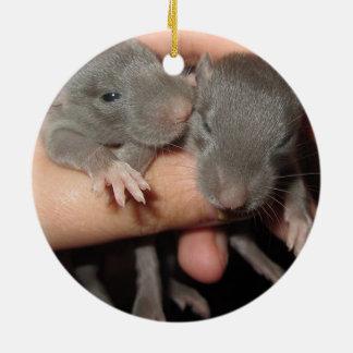 AWWW BABIES! RAT ORNAMENT