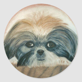 Awww cute doggie classic round sticker