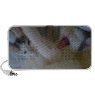 Awww Kitty Laptop Speaker