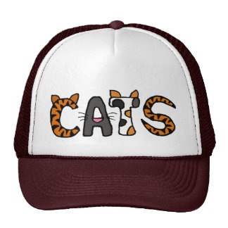 AX- Awesome CATS Hat