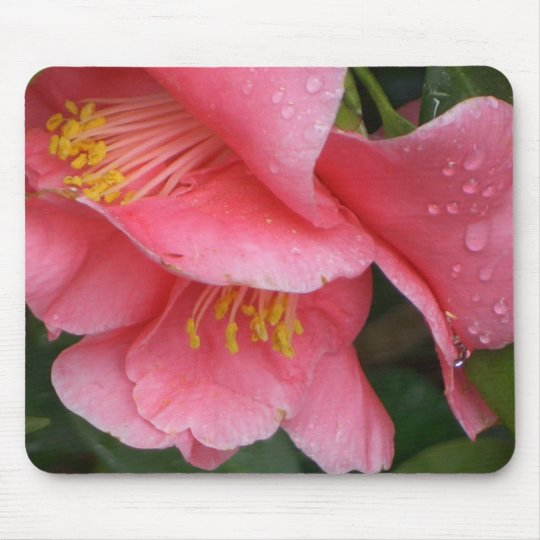 AX- Pink Camelia flower mousepad