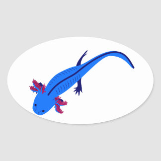 Axolotl from above blue oval sticker