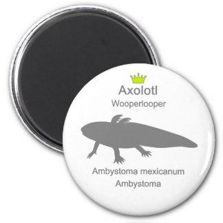 Axolotl g5 2 inch round magnet
