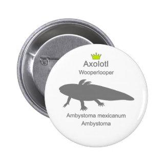 Axolotl g5 pinback button