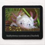 Axolotl Mouse Pad
