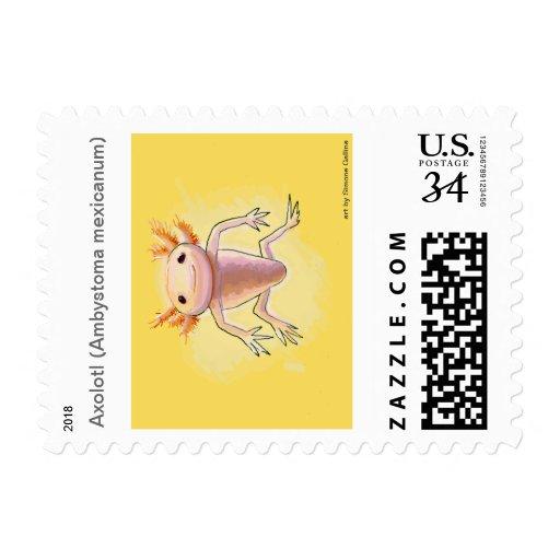 Axolotl Postage Stamp
