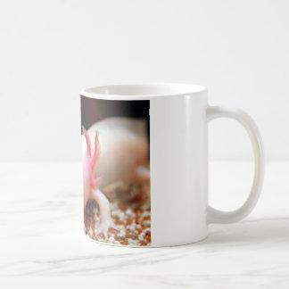 Axolotl Weißling Coffee Mug