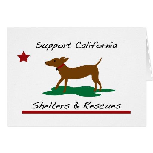 Ayuda animal Notecard del rescate Tarjeta Pequeña