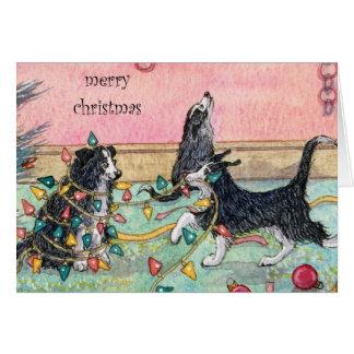 Ayudando con las luces, perros, tarjeta de Navidad